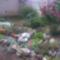 Szikla kertem.
