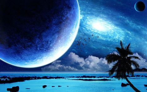 Trópusi holdfény-paradicsom