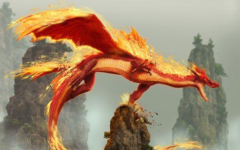 Tűz-sárkány