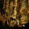 Aggteleki Cseppkőbarlang 21