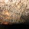 Aggteleki Cseppkőbarlang 9