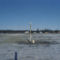 Felhőmódosító síp Alaszka