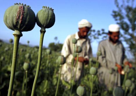 afgán támadás oka az ópiumszállítás feletti uralom megszerzése