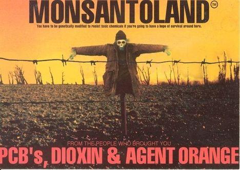 Génmódosított vetőmagokkal és a hozzá szükséges növényvédőszerekkel feltőzi meg a világot Amerika