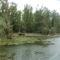 Öreg-szigeti belső tó, Kisbodak, Hullámtéri vízpótlórenszer (4), 2011. július 15.-én