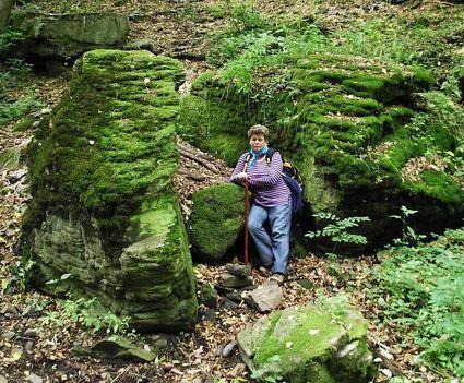 Csörgő pataki mohos sziklák