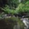 Kis-völgy patak