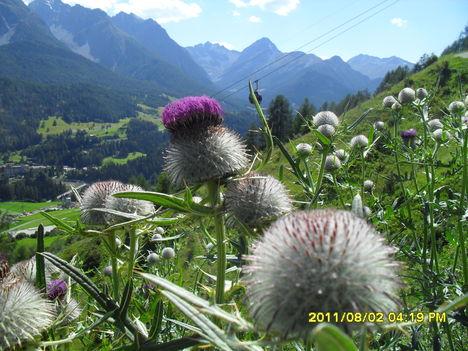 Svájc 2011 116