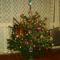 a Népessy család karácsonyfája