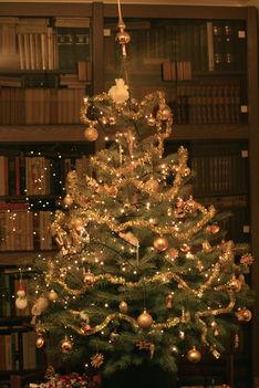 Az Erdélyi család karácsonyfája
