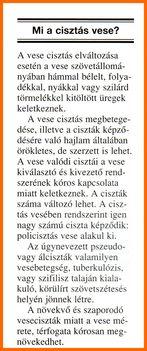 CISZTÁS VESE. 3