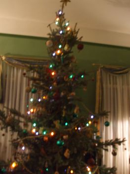 családi macis karácsonyfánk sötétben