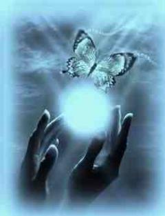 fény pillangó