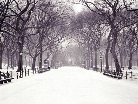 Tél a Central Parkban