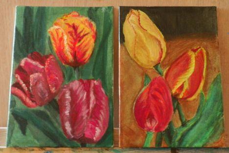 Tulipán tanulmány