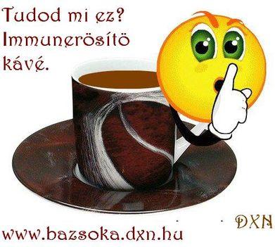 barna_csesze_pszt