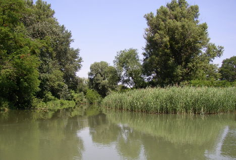 Mosoni-Duna, Lajta torkolata