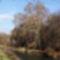 Lajta  folyó, 2006