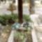 Turay Ida sírhelye