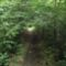 Csögő-patak út