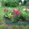 Augusztus a kertbe  20