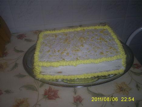 citrom (1)