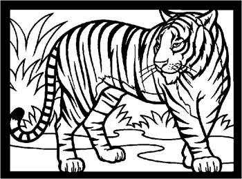 RAJZ tiger_rdax_65