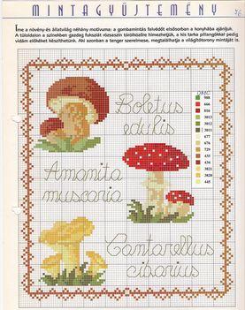 Gombák 05