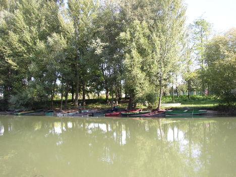 Mosoni-Duna, Halászi belterület melleti szakasz, 2006. szeptember 26