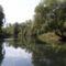 Mosoni-Duna, Halászi feletti szakasz