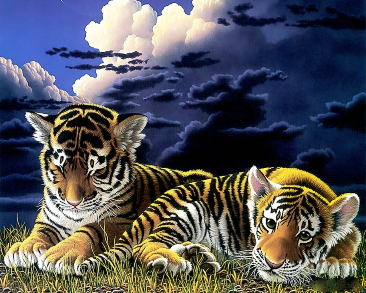 Cute Tiger Cubs Wallpaper