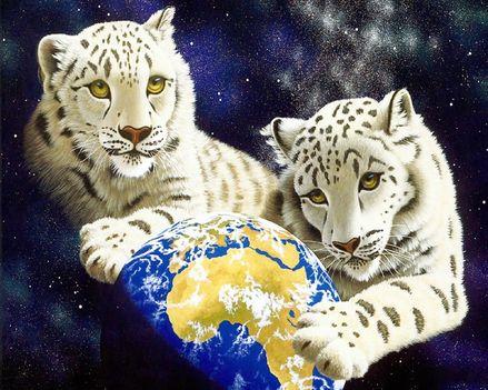 RAJZ baby-white-tigers_1280x1024_3145