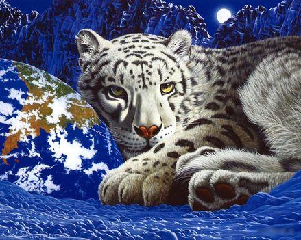 RAJZ white-tiger-club_1280x1024_3154
