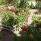 a kert közepén