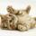 kis cica 1