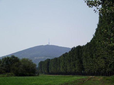 Nagy Morotva Tokaji hegy