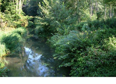 Hédervár, Vadaskerti csatorna