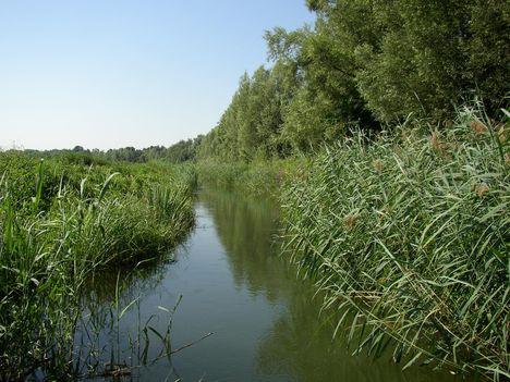 Lipót, Gombócos-Bár-Duna csatorna felső szakasza