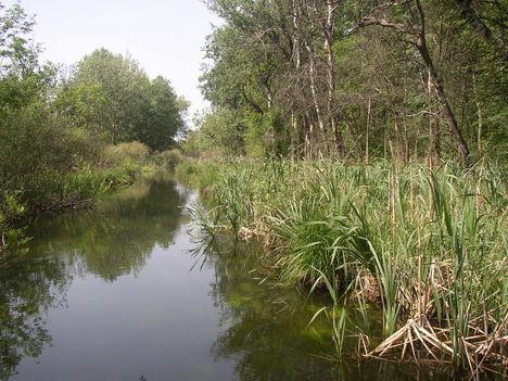 Nováki csatorna, Mikota térségében