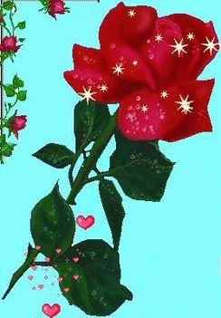 szálas virágos kép 6