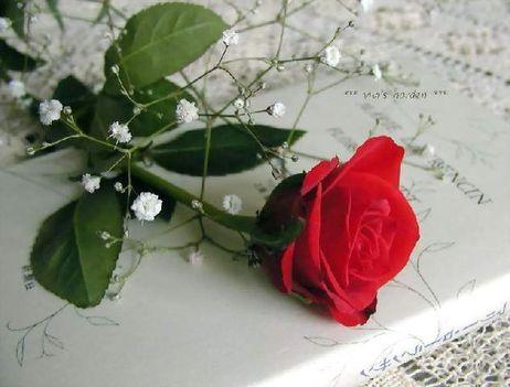 szálas virágos kép 9