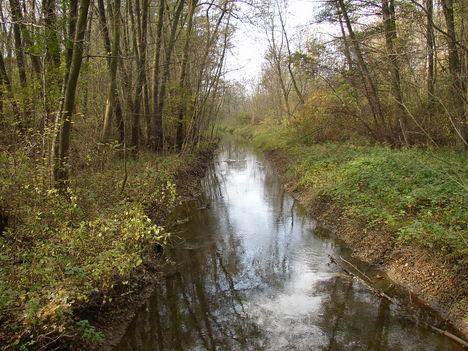 Hédervár, Vadaskerti csatorna (2)