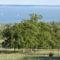 A Balaton látképe