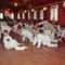 Karate tábor 040