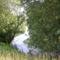 Mosoni-Duna, Rajka, a Diósi holtág, 2003. június 23.-án