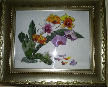 orhidea csokor