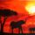 Sunset_in_afrika___aquarell_painting_2007_1249380_7408_t