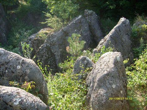 Csárdahegyi Őskarszt, Úrkút