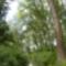 Cikolasziget, Nyárasi fok, Hullámtéri vízpótlórendszer, 2011. szeptember 14.-én