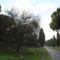 appia_antica_051